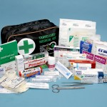 Picture of travellers medical kit contents