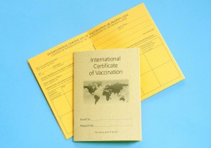picture of vaccination book